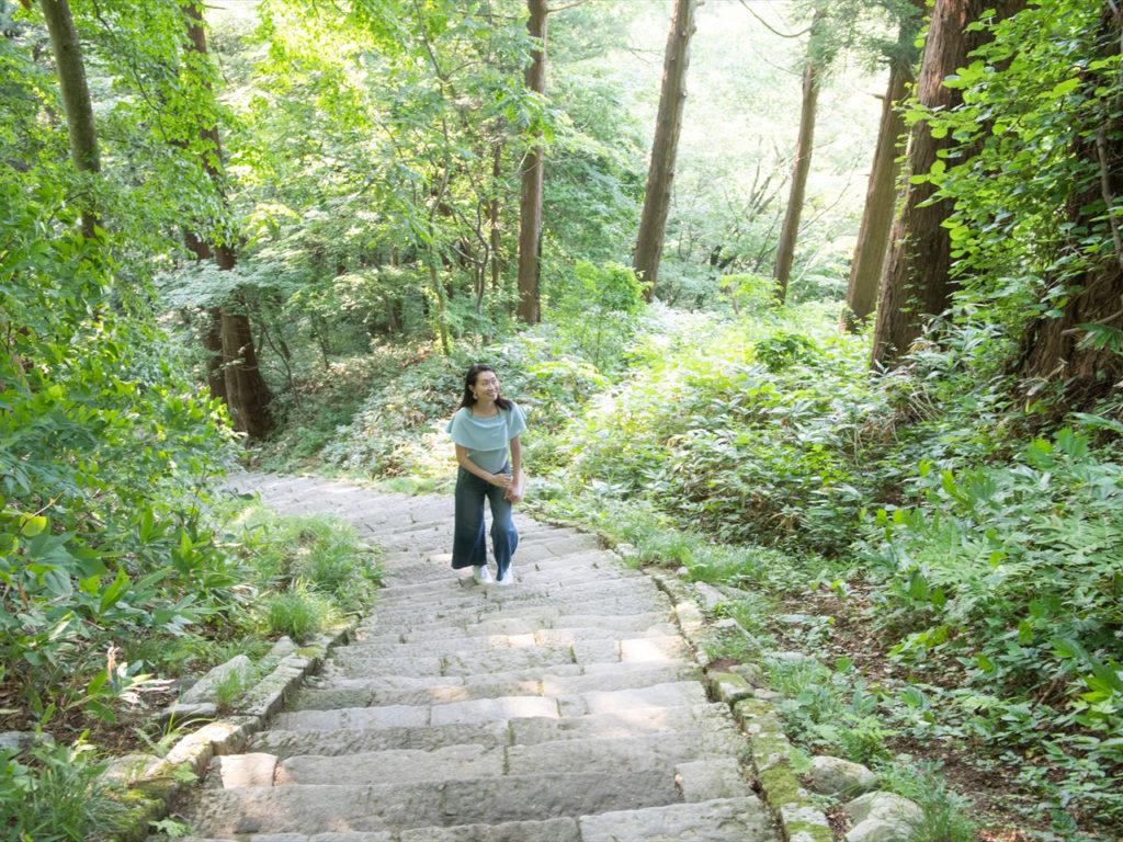 羽黒山の杉並木